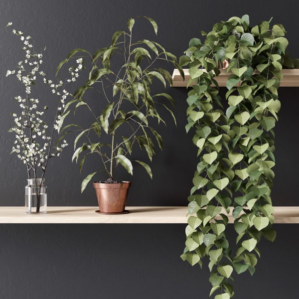 1008.Plants 3dsmax File free download 1 scaled 1