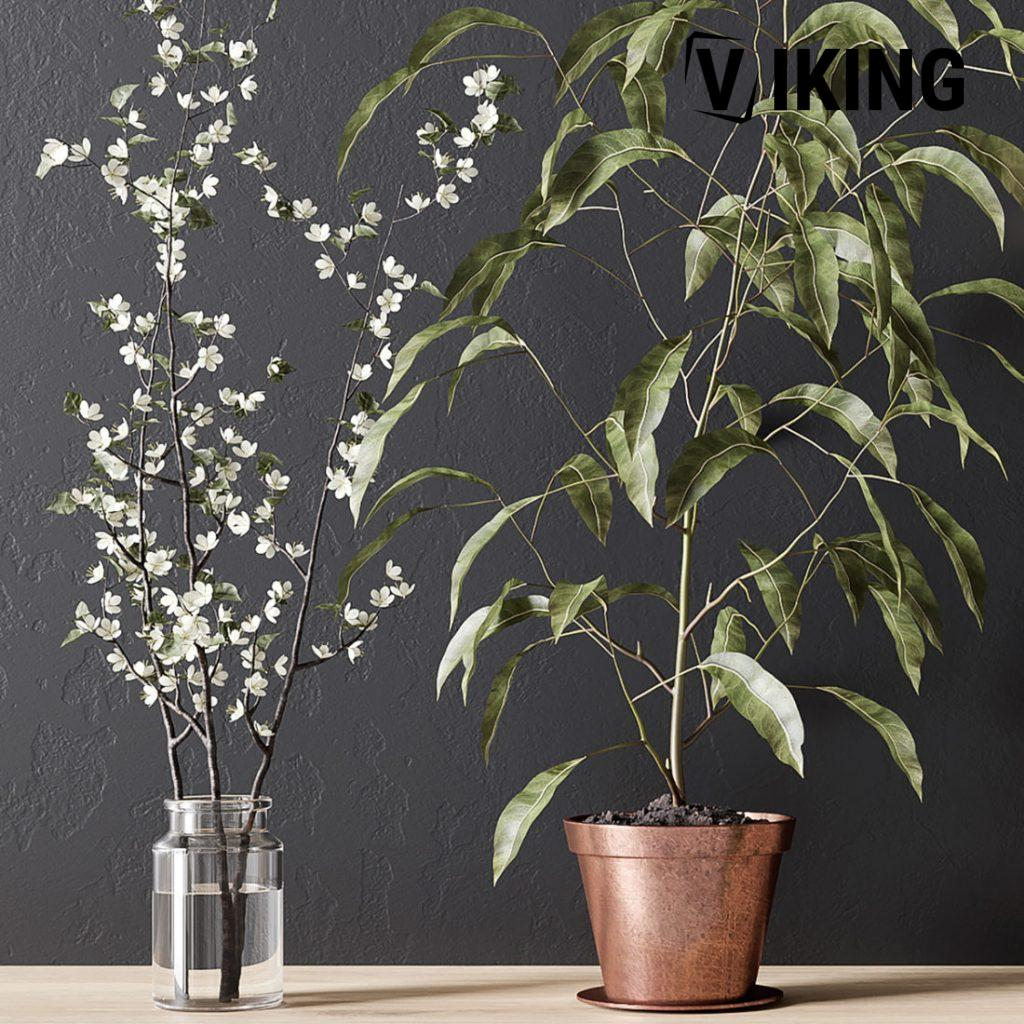1008.Plants 3dsmax File free download 2 scaled 1