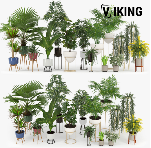 1477.Plants Collection Sketchup File free download