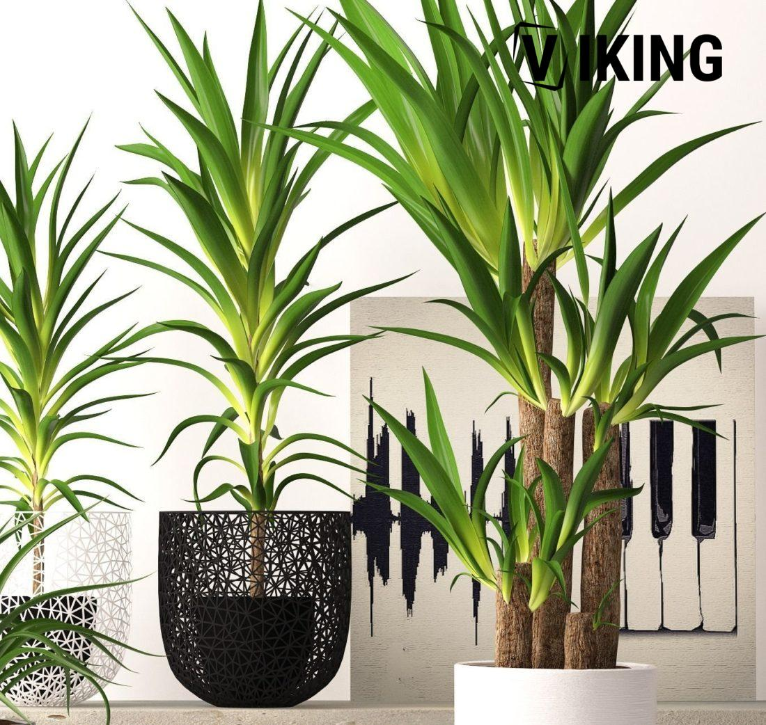 1978.Plant 3dsmax File free download 2 scaled 1