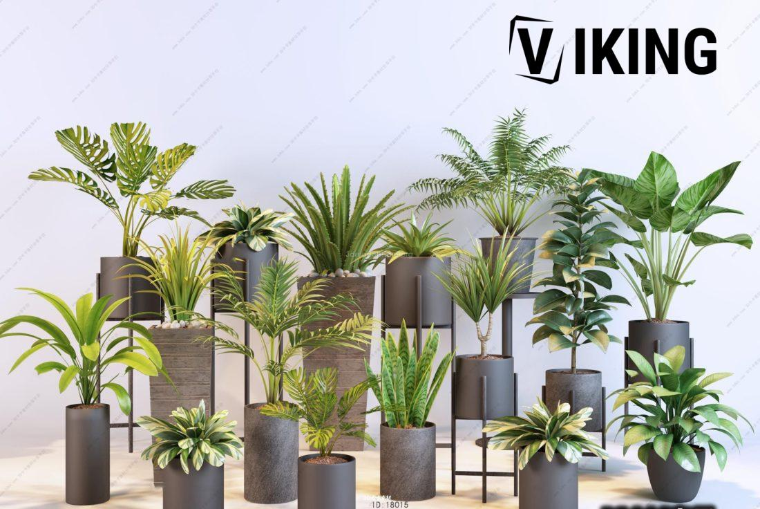 760.Plants Collection 3dsmax File free download