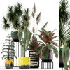 959.Plants Collection 3dsmax File free download scaled 1